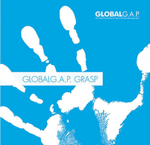 Zertifizierung Global GAP GRASP (Global Risk Assessment on Social Practise), Völkel Gemüsebau